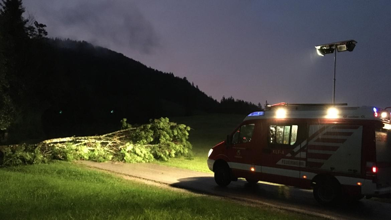 28.07.2020 Sturmschäden